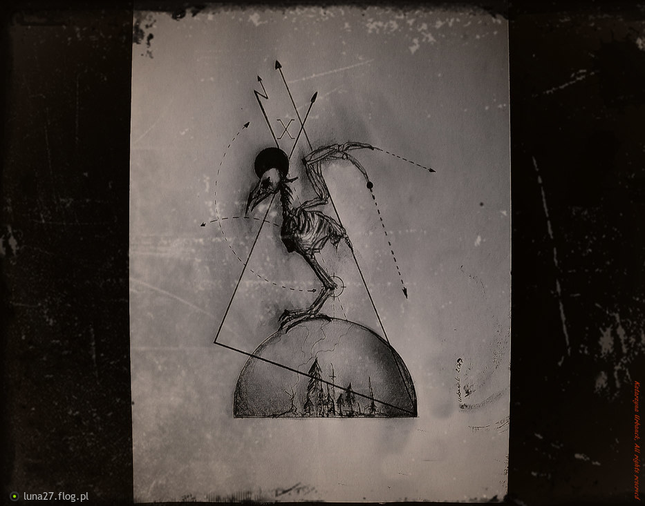 Nevermore 09..../2017/ © Katarzyna Urbanek