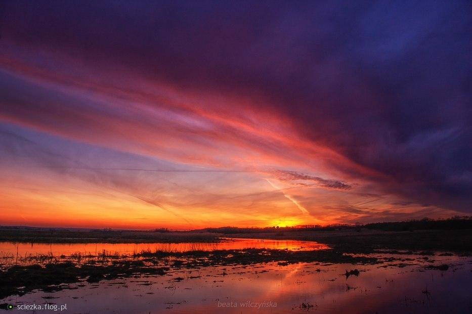 Zachód słońca nad rozlana Supraślą