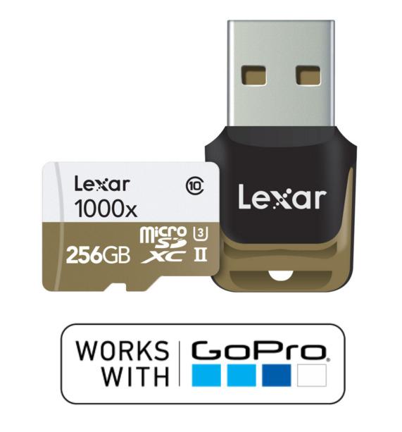Lexar 256GB Micro SD