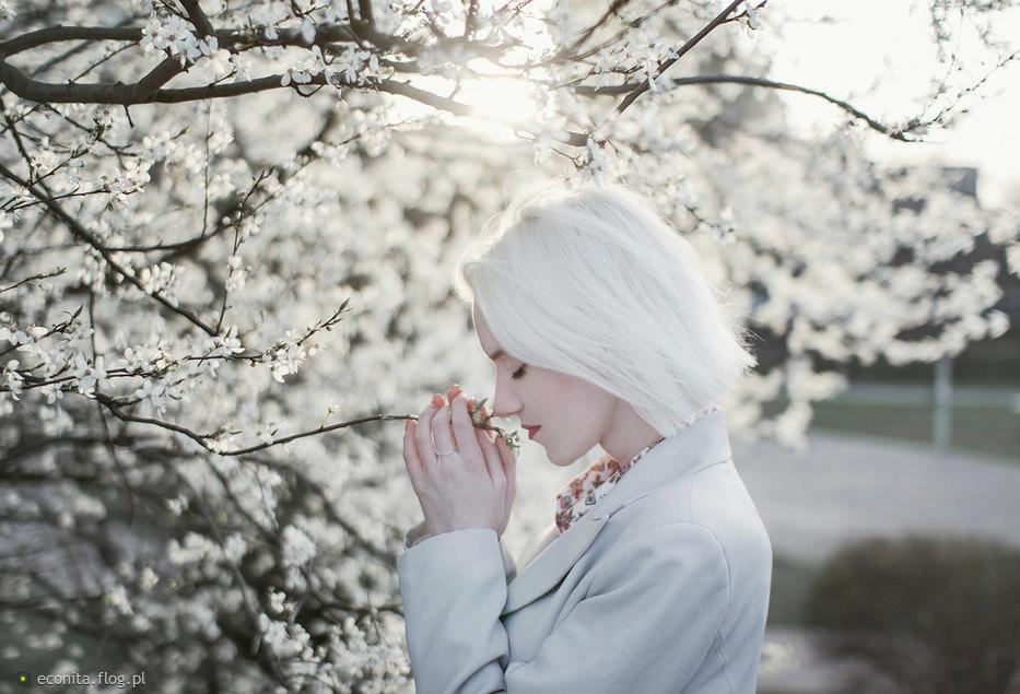 White renewal