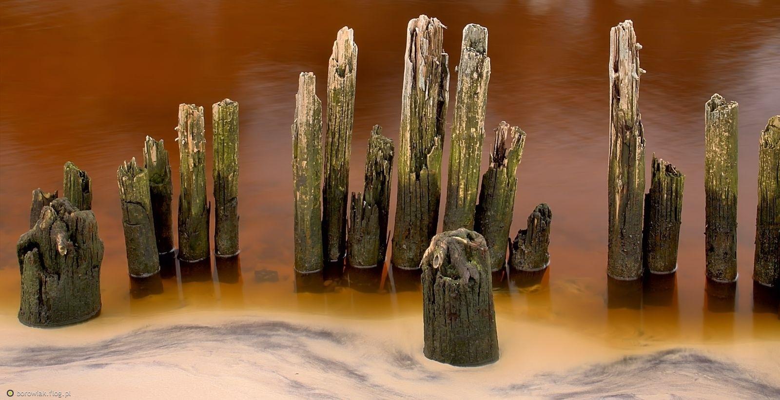 Ujście Czarnej Wody do Bałtyku...
