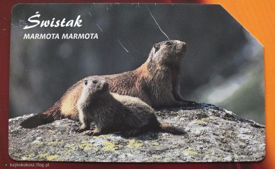Polskie karty telefoniczne