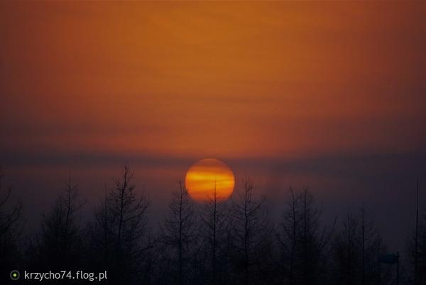 http://s22.flog.pl/media/foto_middle/11733333.jpg