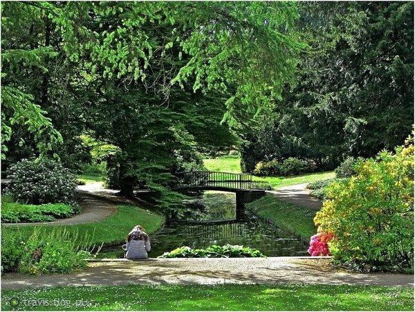 http://s22.flog.pl/media/foto_middle/11738992_w-parku.jpg