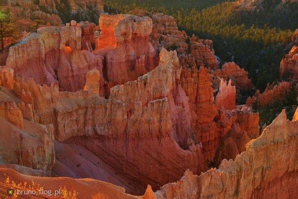 http://s22.flog.pl/media/foto_middle/11797556_bryce-canyon-nat039l-park--czii--sunrise-point--pierwsze-promienie-slonca.jpg