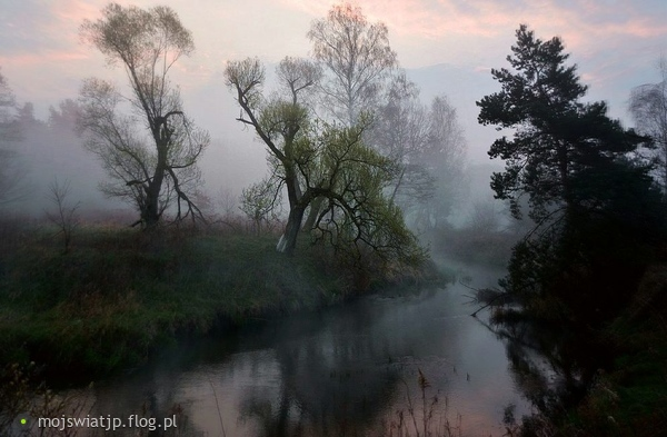 http://s22.flog.pl/media/foto_middle/11828012_wczesnym-porankiem.jpg
