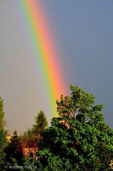 http://s22.flog.pl/media/foto_middle/11918507_slonca-promieni-musniecie-a-jakze-cieszy-serce.jpg