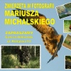 Zapraszam :D :: https://www.facebook.com/<br />Mariusz-Michalski-Fotogra<br />fia-Przyrodnicza-40740637<br />6132750/?ref=aymt_homepag