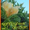 KARTKA Z KALENDARZA – 201<br />7.03.22 ♥ ♥ ♥
