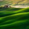 Zielone fale Toskanii