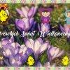 Wesołych Świąt Wielkanocn<br />ych  🐰 🐤 🐏 🐔 🐦 🐣 🐇 🐑  :: Radosnego świętowania  🌼 <br />🐰 🐤 🐏 🐔 🐦 🐣 🐇 🐑 🌼        <br />Pozdrawiam świąt
