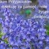Dla wszystkich Flogowiczó<br />w.. z serdecznymi pozdrow<br />ieniami...:):)