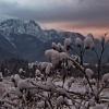 Kwietniowy śnieg narozrab<br />iał w Tatrach :)
