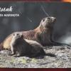 Polskie karty telefoniczn<br />e ::