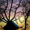 Kolorowy zachód słońca