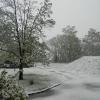Tak powitał mnie dzień...<br />....jeden z przedostatnic<br />h dni kwietnia....wiosna <br />oszalała i nie może rozst<br />ać się z zimą.