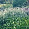 Kocham wiosnę ❤