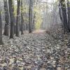 Zdjęcie jeszcze z jesieni<br /> ❤