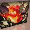 Róża z pozdrowieniami