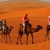 Sahara i karawana - inne <br />spojrzenie