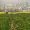 Kaszubskie wioski... Brzy<br />no.