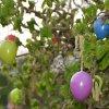 ::   Wielkanoc już... tuż, t<br />uż...:) Święta to czas re<br />generacji i odpoczynku ..<br />.postanowiłam, że